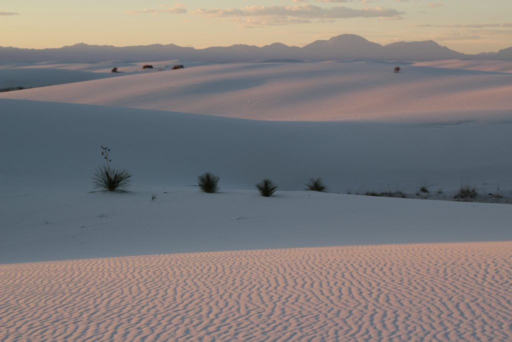 photo of white sands national park at sunset