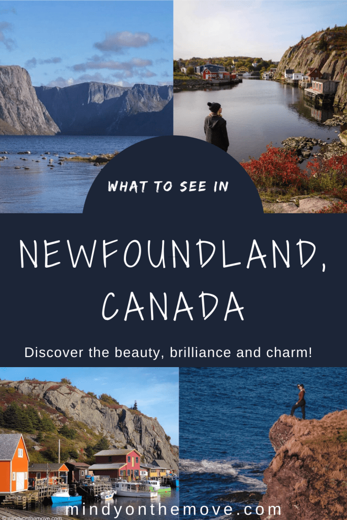 what to see in newfoundland